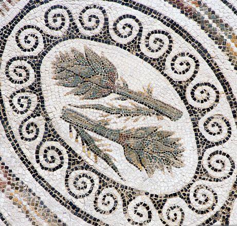 cardoon mosaic - Bardo museum