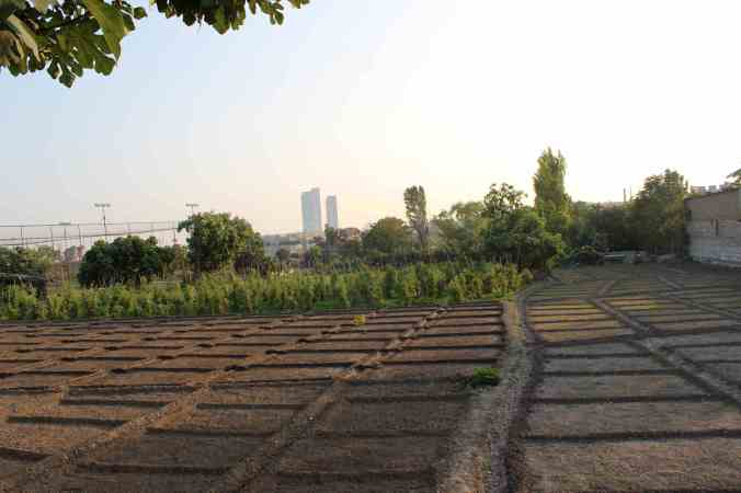 Istanbul beds - cityandagriculture